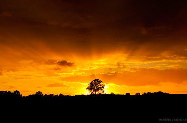 Sunset Schleswig Holstein by Antarialus